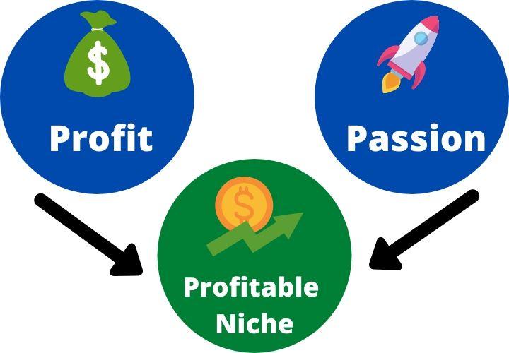 choose a profitable niche